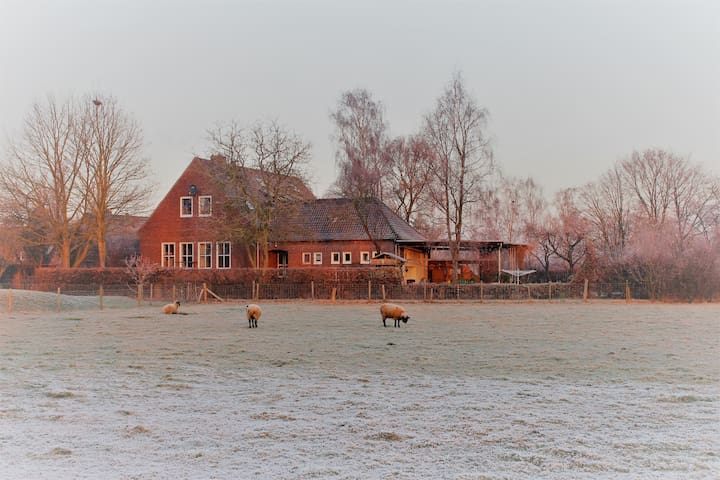 Charming old village school in country side - Kranenburg - Lägenhet