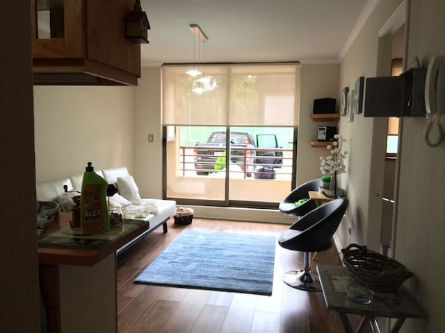 Bello depto NUEVO en Pucon 4-5 pers - Pucon - Appartement