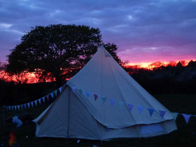 Cosy bell tent - Isle of Wight - Tenda