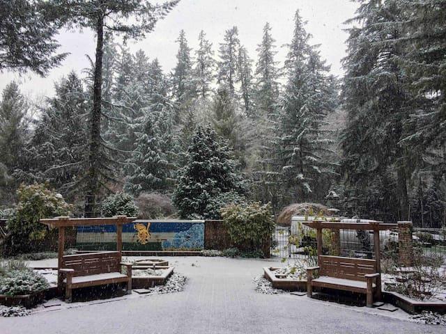 McKenzie River & Garden Retreat-Downstairs Lodge