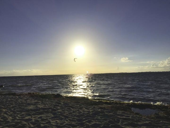 Gold No 1 .1 - optimal für Kiter und Surfer