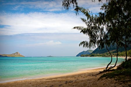 Relax between Majestic Mountains and Epic Beach - 威玛纳诺(Waimanalo)