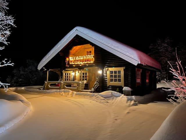 Familievennlig hytte Ski-in/Ski out Hallingskarvet