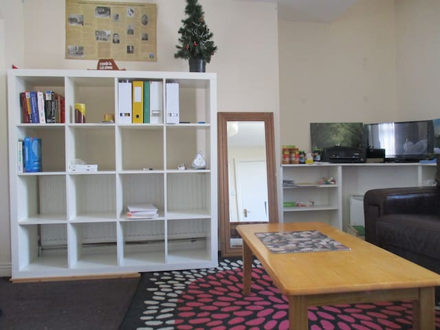 Bedroom in Ranelagh, very close to city center. - Dublin - Apartment