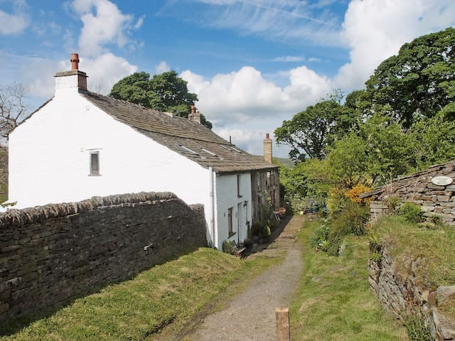 Wellhope Gill Cottage (W41169)