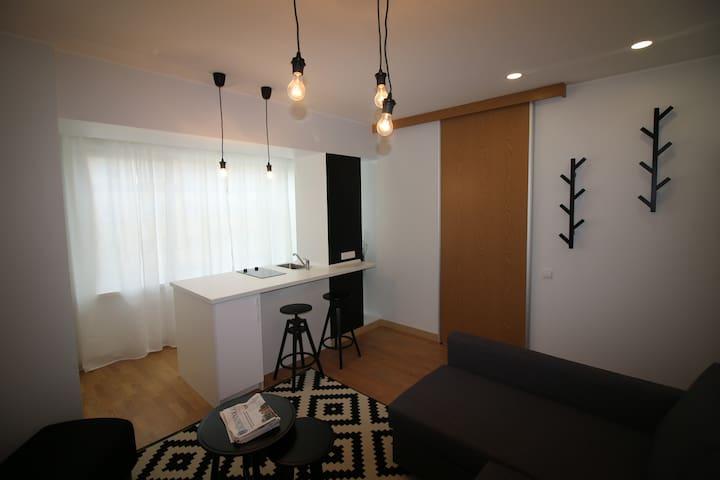 Pleasant place in Druskininkai - Druskininkai - Apartment
