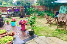 Pretty enclosed Garden