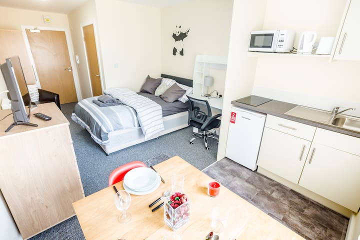 Large Studio Suite -Walking distance to the Centre