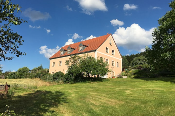 Unique holiday home, ideal as group accomodation, with lounge, a spacious garden, sauna and terrace