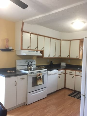 Kitchen: Stove, Dishwasher, kettle, toaster