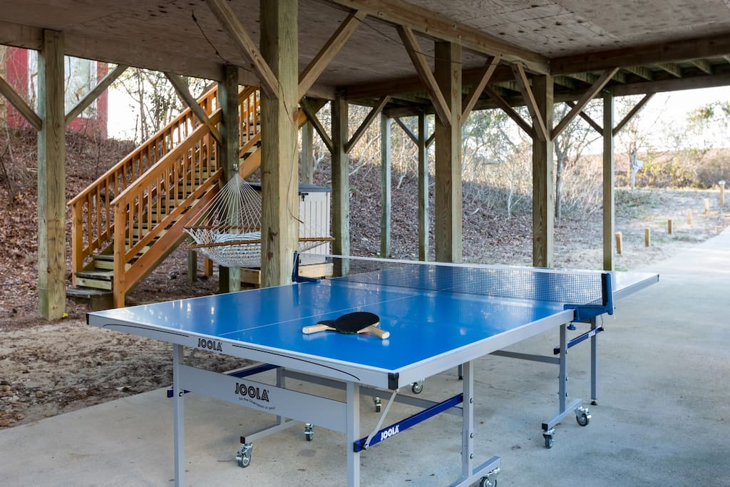 Weatherproof Ping Pong table (balls & paddles in the kitchen)