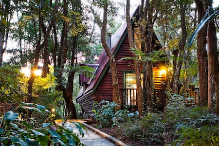 The Mouses House Rainforest Retreat - Spa Chalets