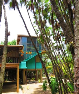 Living in the treetop with amazing views - Maya Beach - Haus