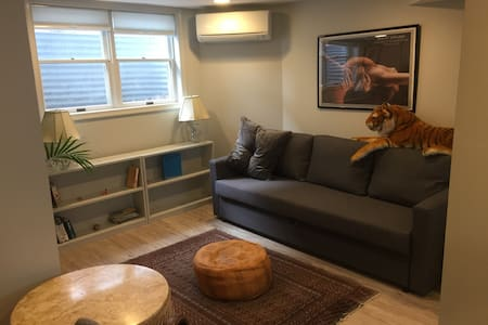 Bright, Private Takoma Park Studio - walk to Metro - 塔科马帕克 - 独立屋