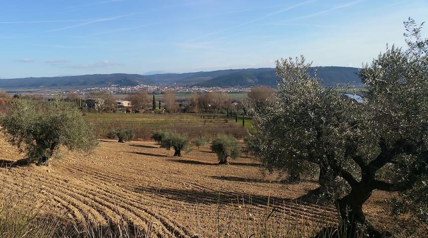 Les Vergers de La Galine - Villeneuve - บ้าน