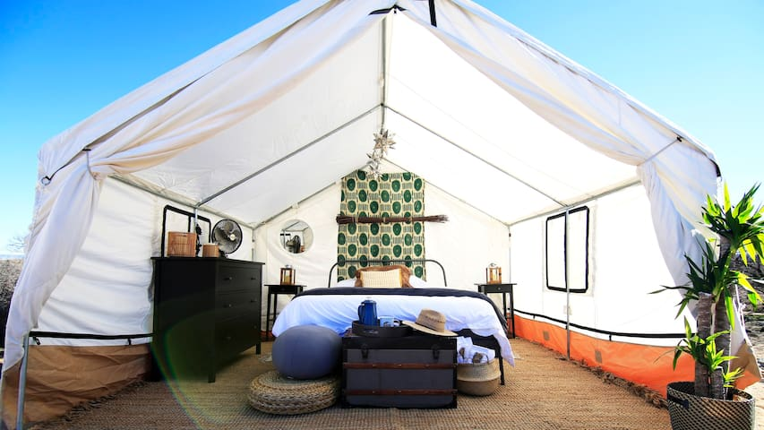Out of Africa Glamping Safari - Singita Tent