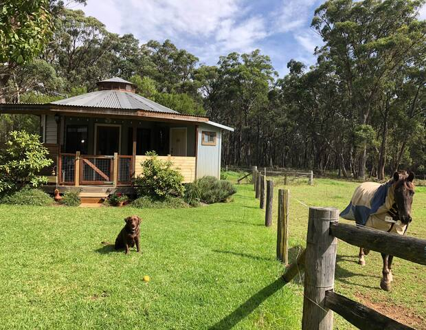Ionaforest Yurt - Wingello Southern highlands NSW