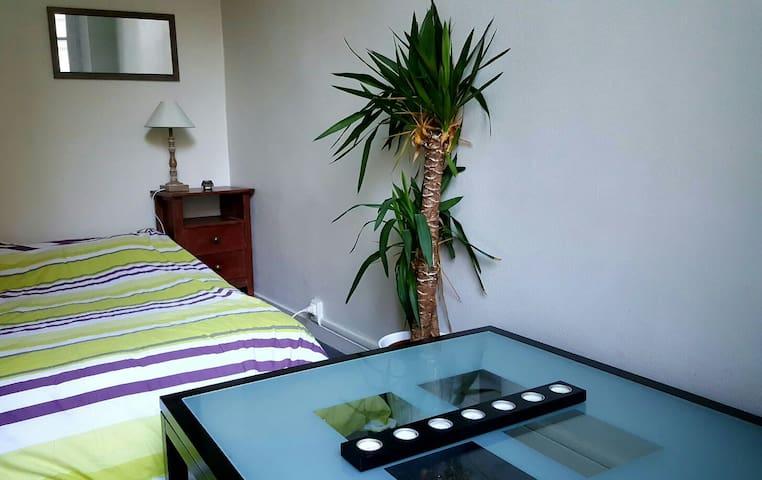 Belle chambre avec balcon en centre ville - Saumur