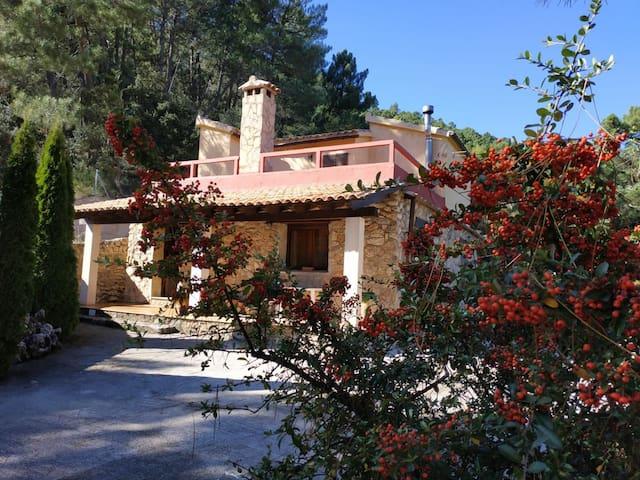 Casa rural villa concha