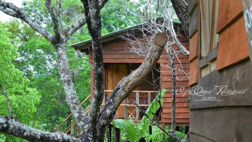 Tree house sigiri queens rest