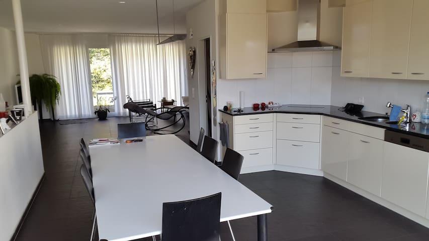 Modernes Haus mit Sauna! - Brugg - Hus