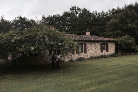 Rotanselva Country House is an old house hidden in the wild Umbrian countryside. It is placed in the middle of nature and animals belong to the landscape. Around there are only woods and the closest old Middle-Age village, Ficulle.