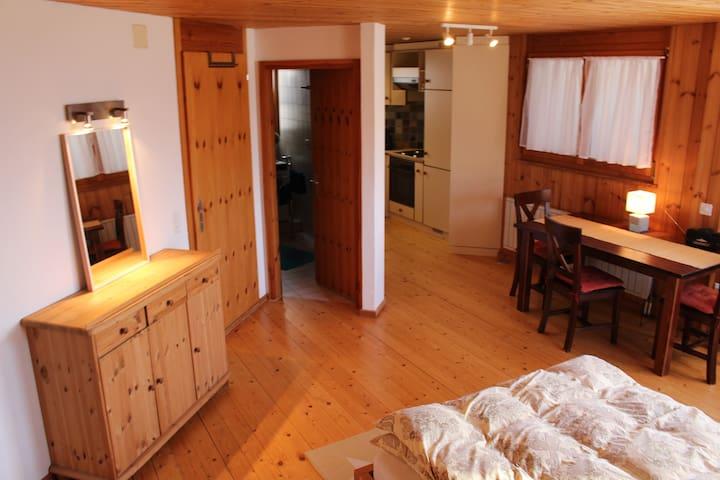 Wohnung im Herzen der Alpen inmitten des Rheintals - Schellenberg - Lägenhet