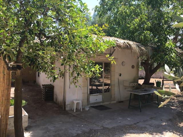 Casa vacanze Salento Capo di Leuca - Ruffano - House