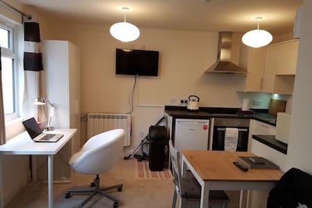 Luxurious studio flat near city centre
