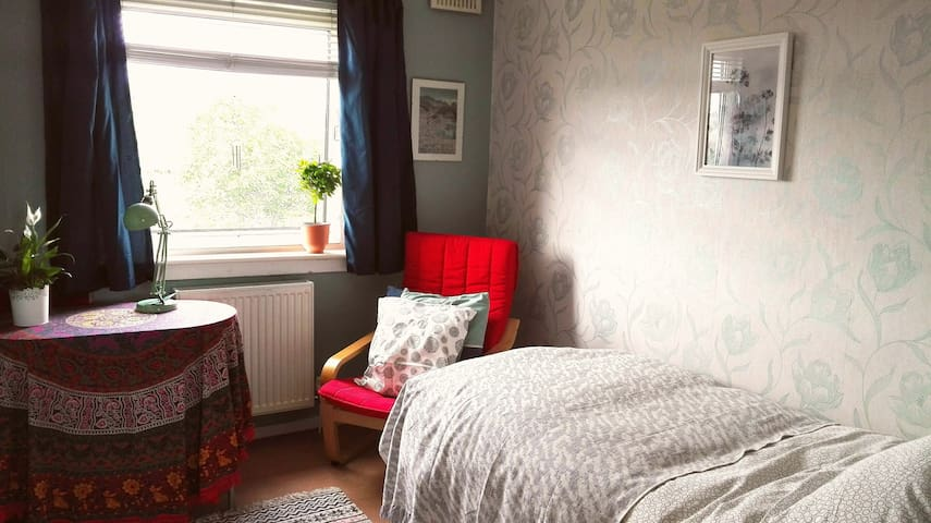Single Room in Cosy Friendly Flat