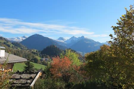 Gemütliche Wohnung, atemberaubende Ausblicke - Kitzbühel