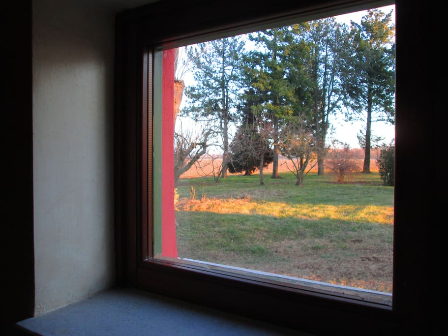 Vista parco d'inverno da una finestra del salotto