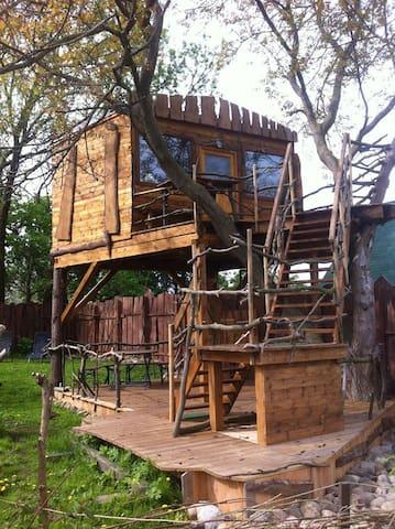 rustikales Baumhaus mit Seeblick