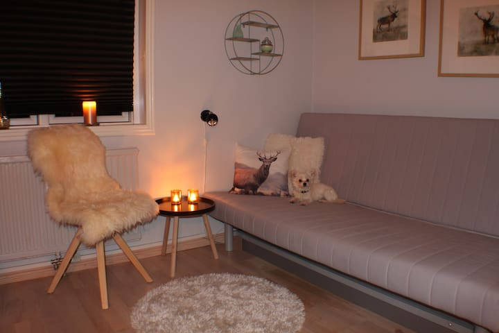 Cozy room located near airport, nature and City - Dragør