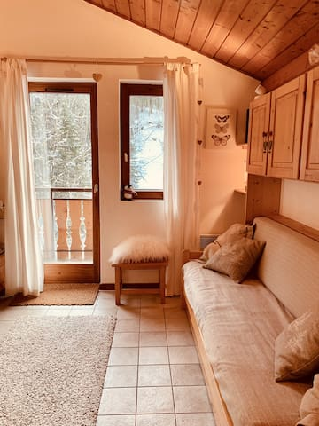 Cosy 1 Bed Ski in/Ski out Apartment in Morzine