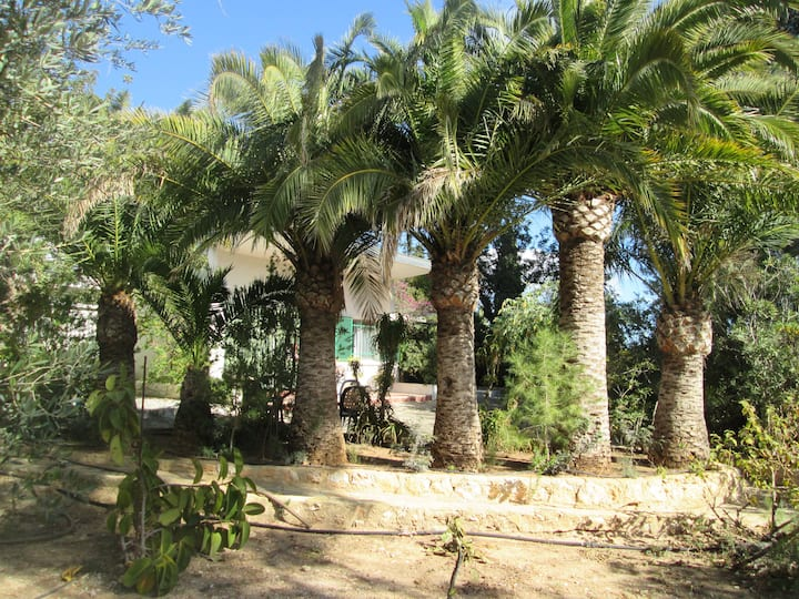 La Gaviota your relaxing- oasis winter and summer
