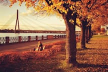 During romantic walk along the river Daugava (3 min from home)
