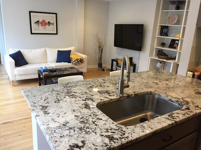 Modern DC Apt. with a Great View! Central Location
