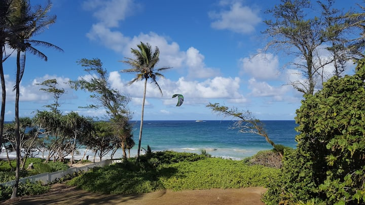 Ocean Front Home On Sandy Beach, Large Private Lot