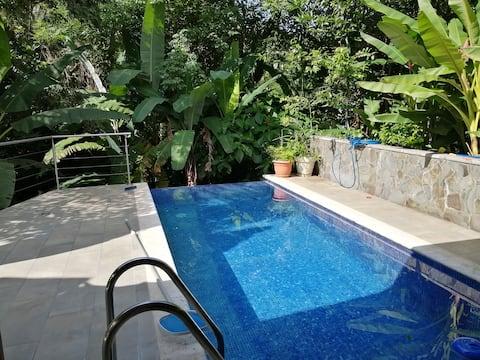 Little Jungle Paradise