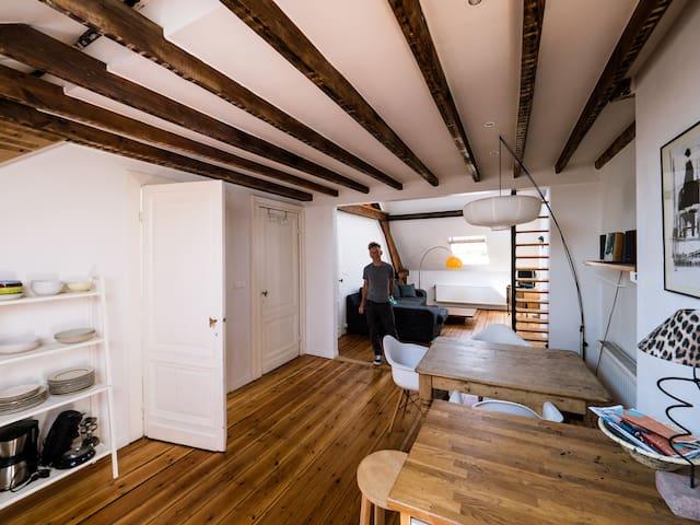 Light and spacious duplex apartment