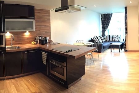 Beautiful Apartment 25 minutes from Dublin centre. - Sandyford