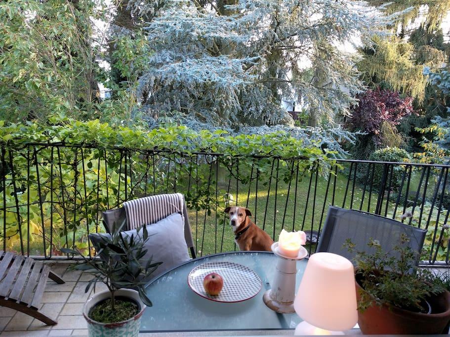 Balkon mit 2 Sitzgelegenheitenen und Liege