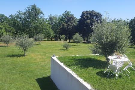 Villa dans un parc privé de 4 hecta - cervione - Villa