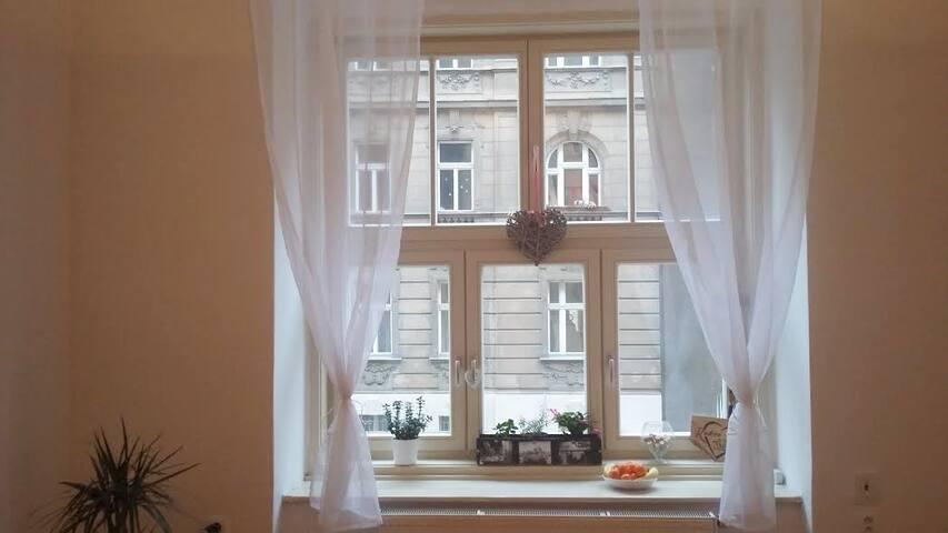 Cosy flat close to the river - Praha 2 - Apartment