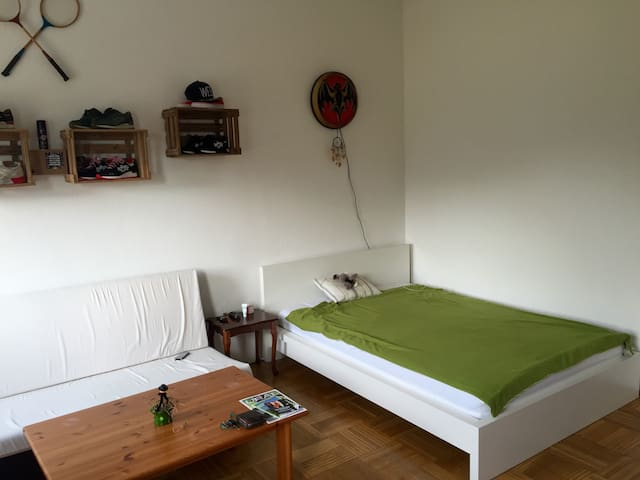 WG Zimmer 20 qm mit Münsterblick - Ulm - Leilighet