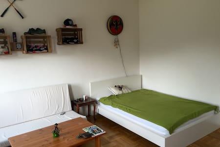 WG Zimmer 20 qm mit Münsterblick - Ulm - Apartamento