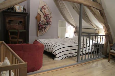 Chateaux de la Loire, Une chambre. - Couffy