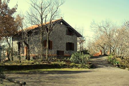 Etna Houses & Horses - Belpasso - Ház