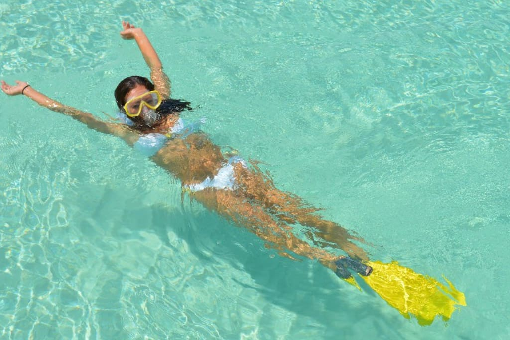 Snorkelling one of the top 3 things to do while on island - Poinciana Place 2 Bed, 2 bath rental - Providenciales